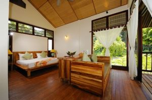 Standard Chalet - Twin Sharing (Jungle View)