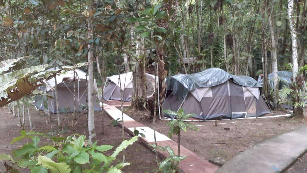 Kinabatangan Camping Experience